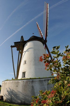 Moulin Ostiches